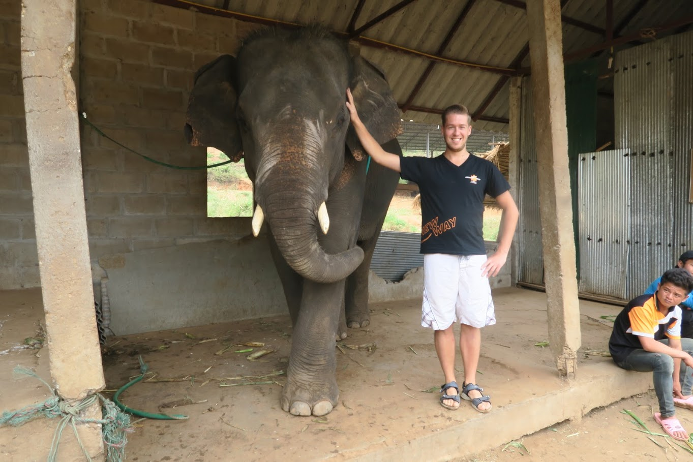 Elephant Camp in Chiang Mai